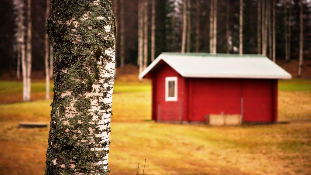 сплетни и факты о Финляндии