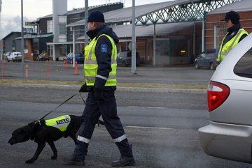 Ввоз товаров в Финляндию - правила и ограничения. Фото: YLE
