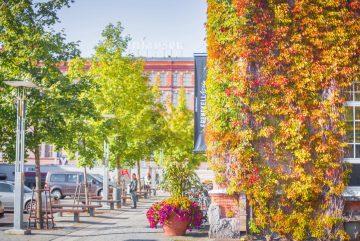 Осень в Тампере