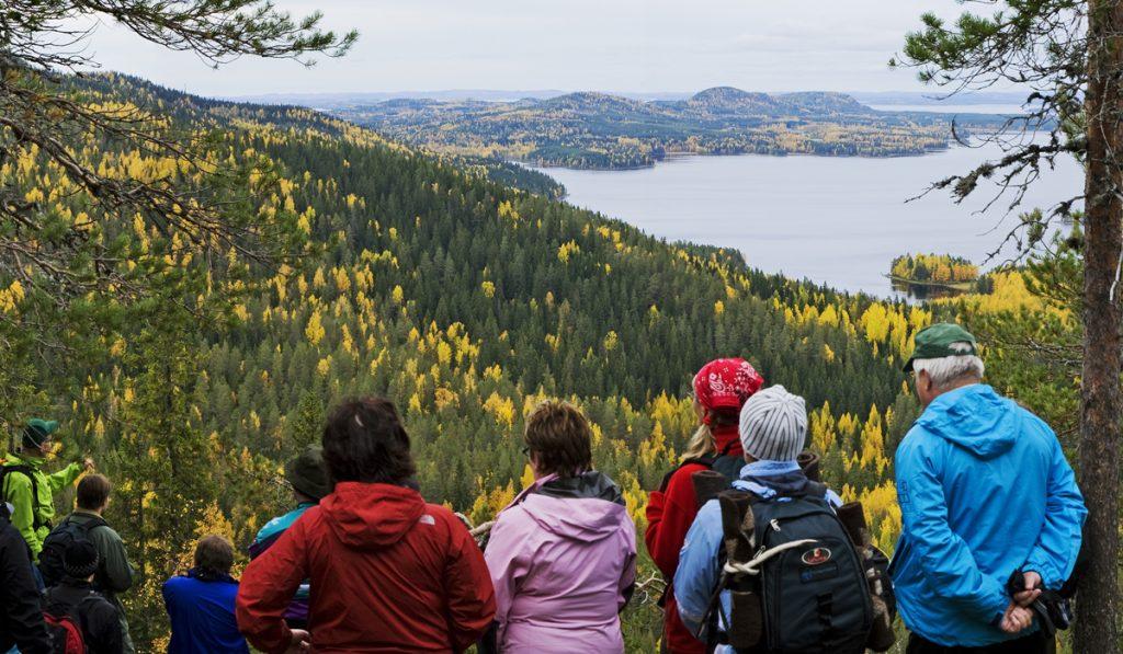 Осень в национальном парке Коли
