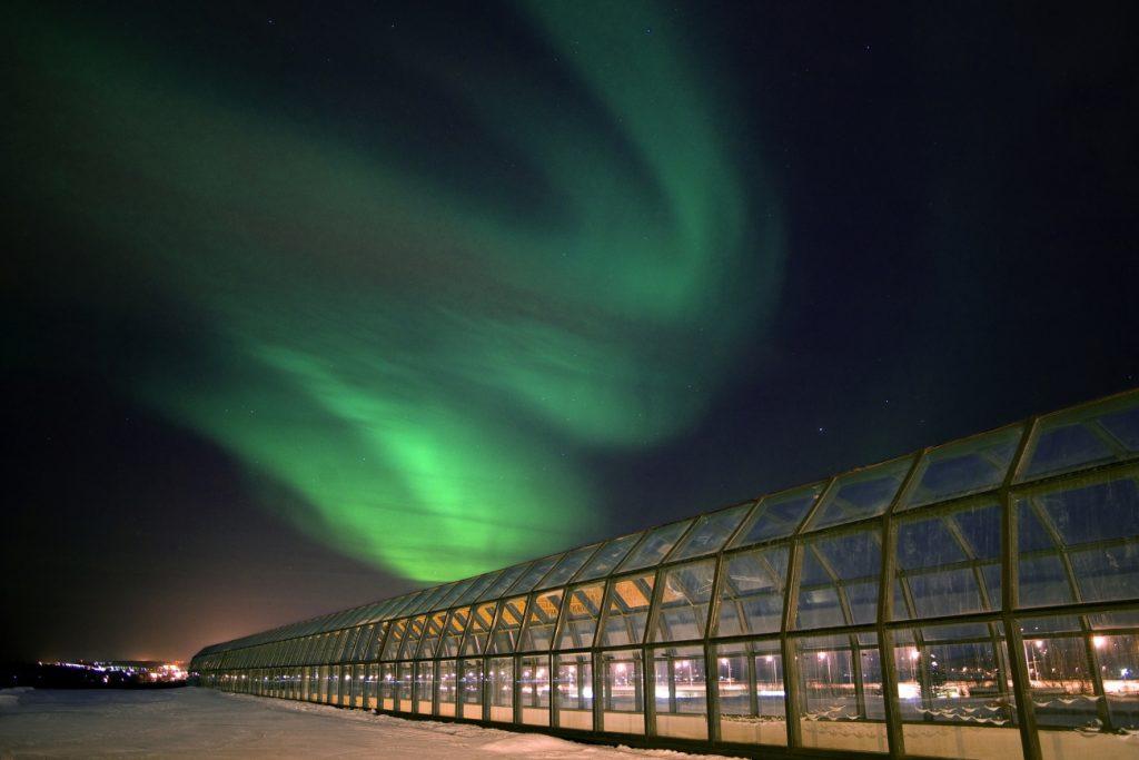 Арктикум. Фото: Pekka Koski